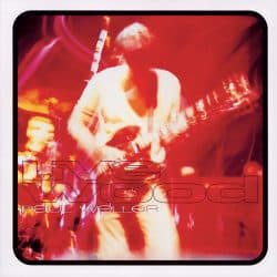 Paul Weller | Wild Wood Tour: Live Wood 1993 1994