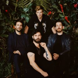 Foals | Best of 07-19 | +15