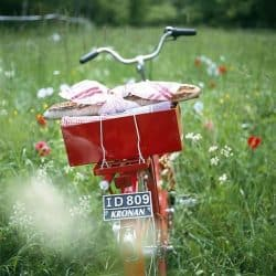 Picnic on Bike | Jukebox Selection | 12+