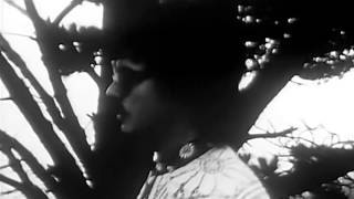 Music Videos Selection 1960's
